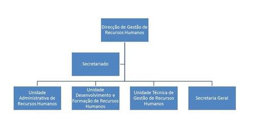 Organograma da DGRH